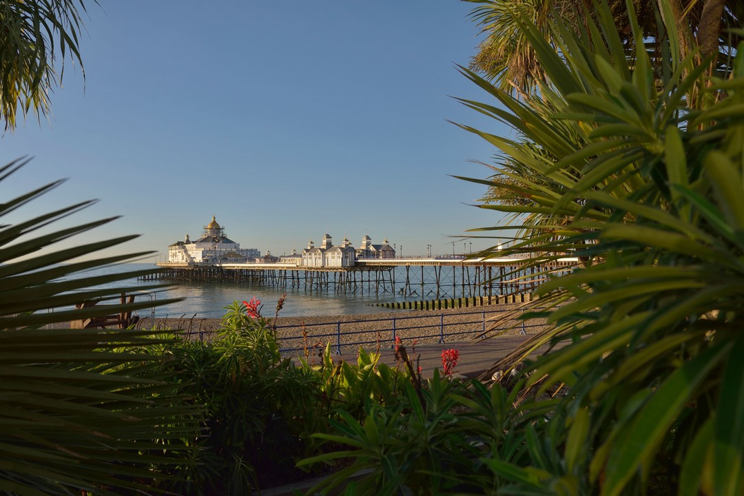 Brighton or eastbourne kardan travel for Garden design eastbourne